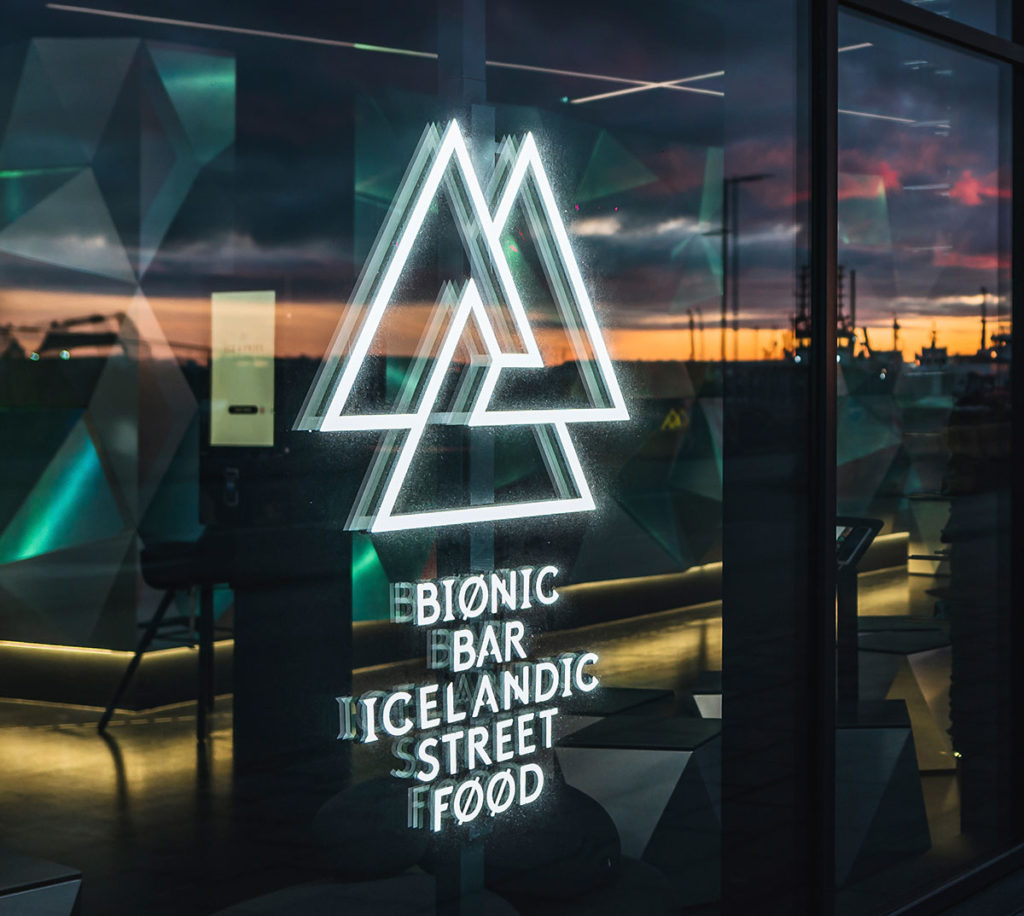 bionic bar iceland islandia ice fries